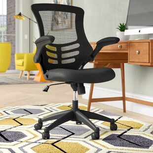 Wrought Studio Paignt Mesh Desk Chair