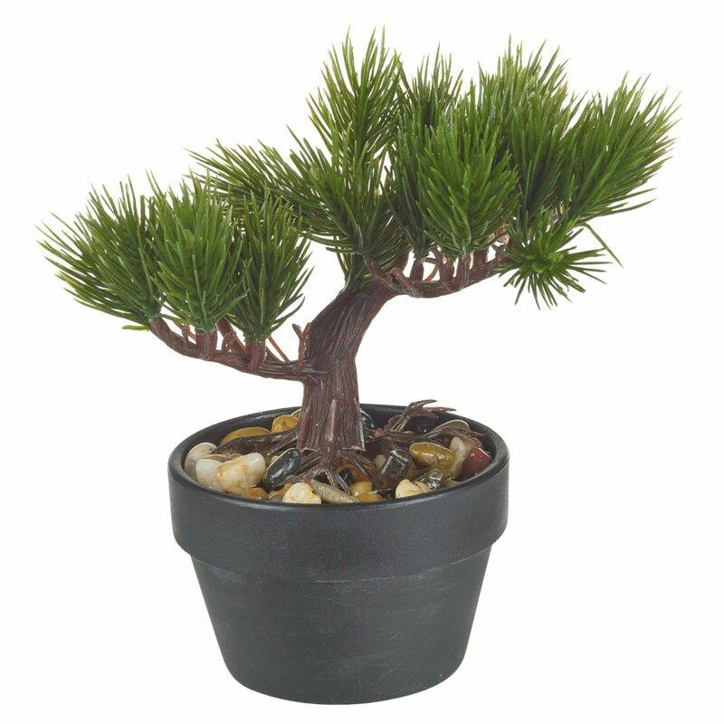 The Seasonal Aisle Artificial Bonsai Desktop Tree In Pot Wayfair Co Uk