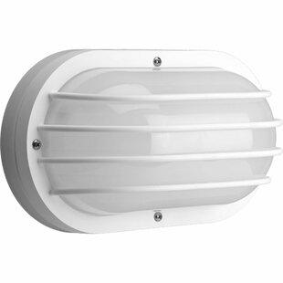 Longshore Tides Maisel 2-Light Outdoor Bulkhead Light