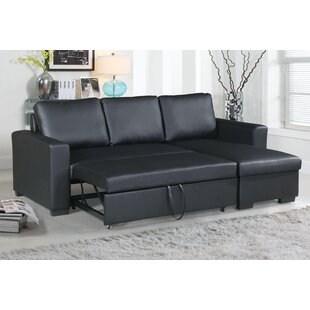 Latitude Run Singletary Sleeper Sectional