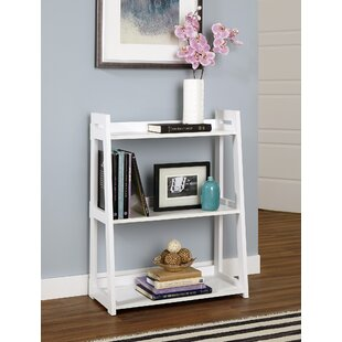 Wide Ladder Bookcase by Closet..