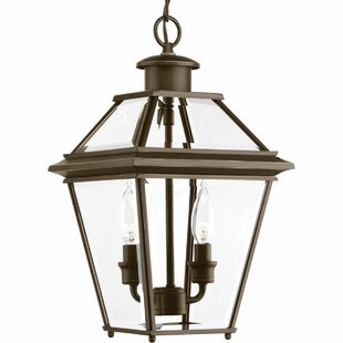 Gunnora 2-Light Outdoor Hanging Lantern by Darby Home Co Savings