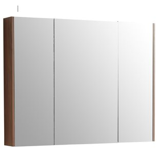 Ageet Surface Mount Framed Medicine Cabinet with LED Lighting by Ebern Designs