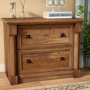 Savings Orviston 2-Drawer Lateral Filing Cabinet by Three Posts