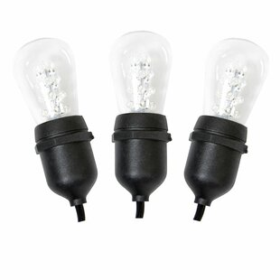 Vickerman 12-Light Globe String Lights