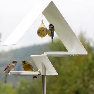 Decorative Bird Feeder By Sol 72 Outdoor