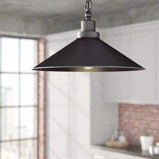 Trent Austin Design Mccullen 1-Light Cone..