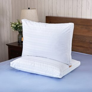 Bridgette Down Bed Pillow (Set of 2)