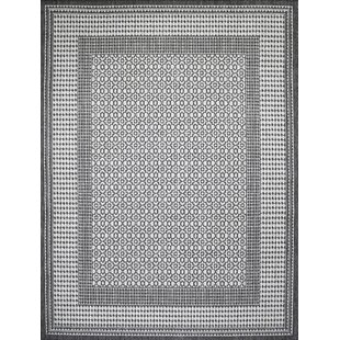 Satter Gray Indoor/Outdoor Area Rug