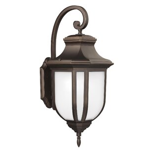Teri 1-Light Outdoor Wall Lantern