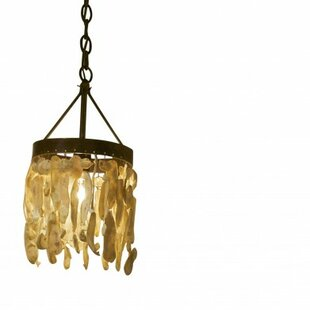 Wassau Shell 1-Light Novelty Pendant by Lowcountry Originals