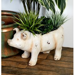 Ceramic Pigs Wayfair