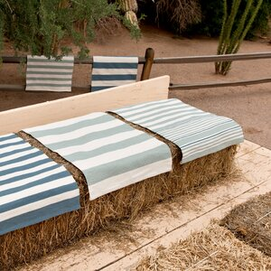 Indoor/Outdoor Denim/Ivory Outdoor Area Rug