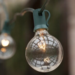 Check Prices 50-Light Globe String Lights By Wintergreen Lighting