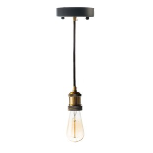 Williston Forge Fabian 1-Light Bulb Pendant