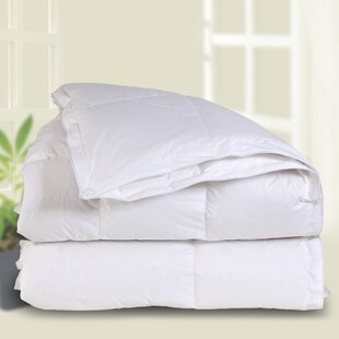 All Season Down Comforter by Downright