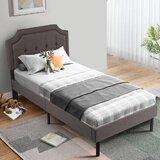 Naci Tufted Upholstered Low Profile Platform Bed by Red Barrel Studio®