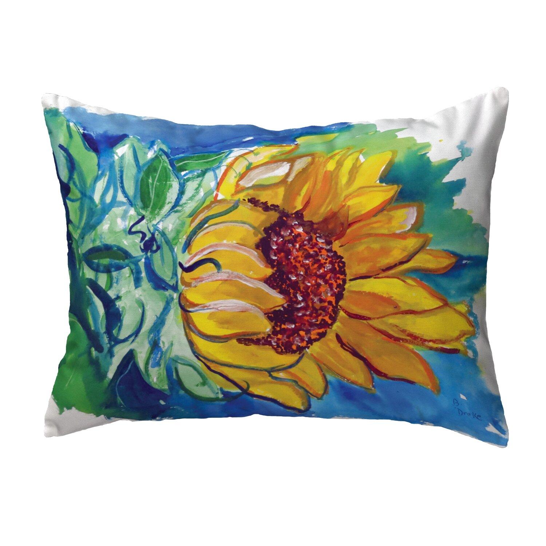 August Grove Olmos Indoor Outdoor Lumbar Pillow Reviews Wayfair