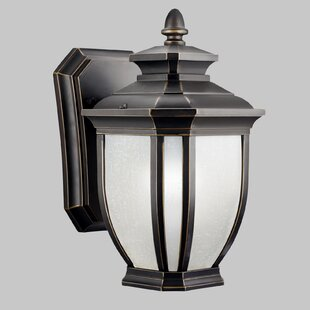 Greenview 1-Light Steel Outdoor Wall Lantern by Three Posts