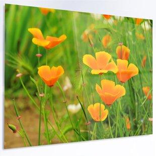 Poppy yellow wall art youll love wayfair bright yellow poppy flowers photographic print on metal mightylinksfo Choice Image