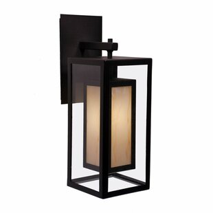 Austin 1-Light Outdoor Wall Lantern