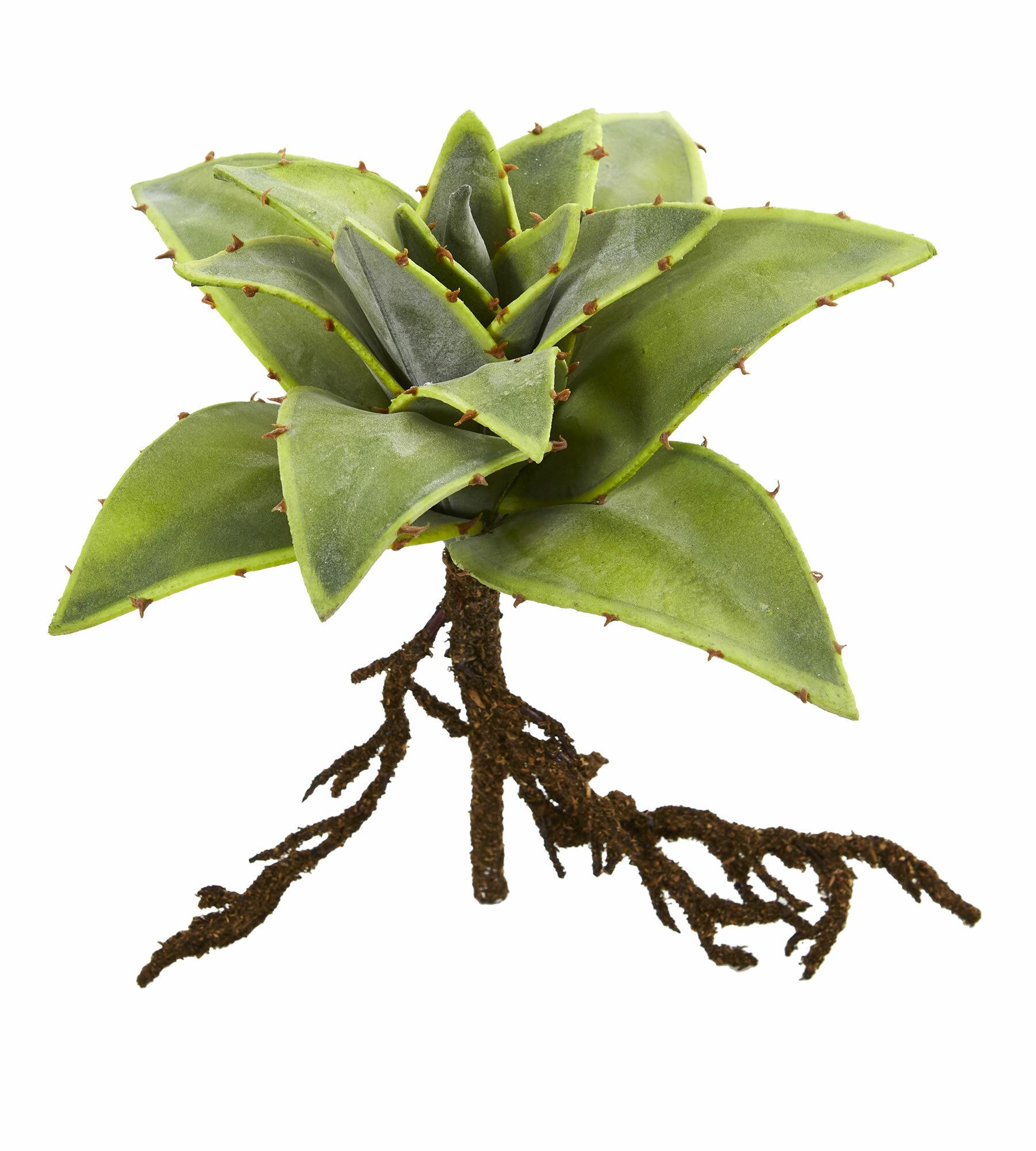 Realistic Plastic Fade Resistant Green Succulent Purple Flower Exotic Faux Plant