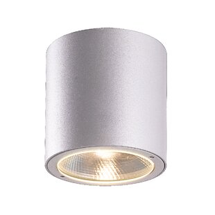 Affordable Alijah 1-Light Outdoor Flush Mount By Orren Ellis