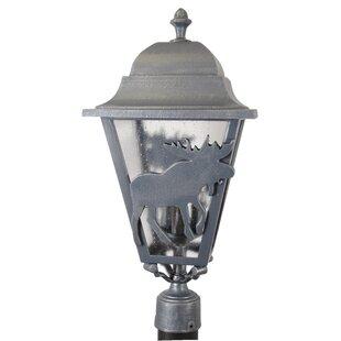 Penfield Moose Series 3 Light 25