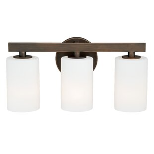 Red Barrel Studio Listermann 3-Light Vanity Light