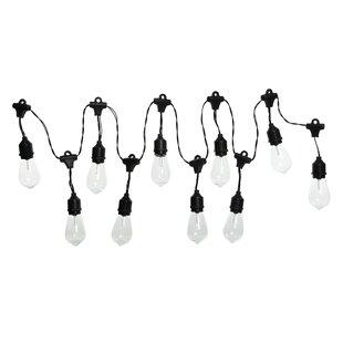 Williston Forge Slack Edison Shell 7.5 ft. 10-Light Globe String Lights