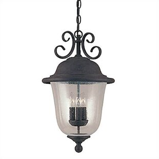 Fleur De Lis Living Elizabeth 3-Light Outdoor Hanging Lantern