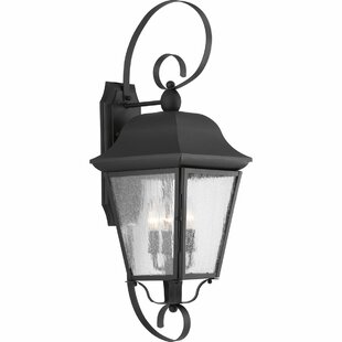 Affordable Ephraim 3-Light Outdoor Wall Lantern By Darby Home Co