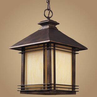 Read Reviews Federal Heights 1-Light Outdoor Hanging Lantern By Loon Peak