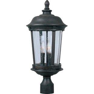 Savings Nunnally Outdoor 3-Light Lantern Head By Darby Home Co