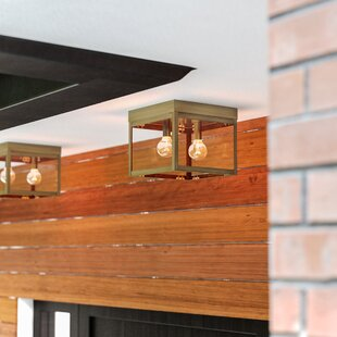 Mercury Row Demery Modern 2-Light LED Outdoor Flush Mount