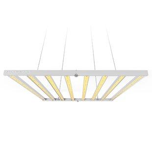 LED Full Spectrum Grow Light