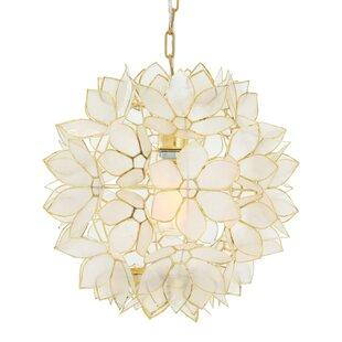 Glam Shell Pendant Lighting You Ll Love In 2021 Wayfair