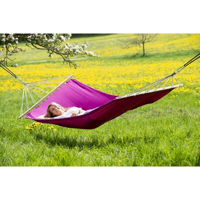 Charlotte Tree Hammock by Freeport Park Discount
