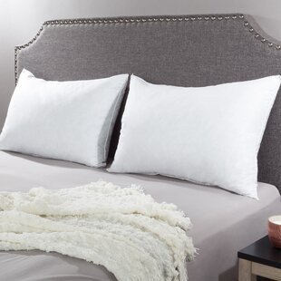 Indie Medium Down/Feather standard Pillow (Set of 2)
