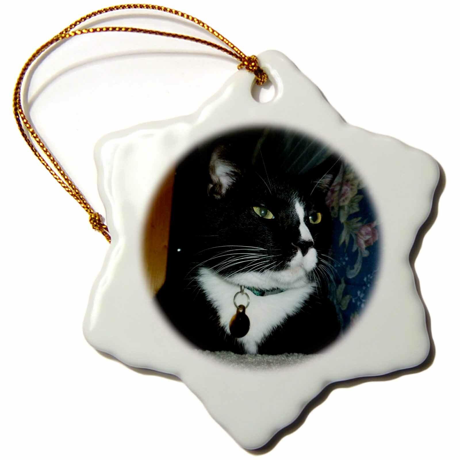 The Holiday Aisle Tuxedo Cat Snowflake Holiday Shaped Ornament Wayfair