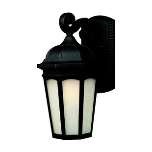 Charlton Home Laceyville 1-Light Outdoor Wall Lantern