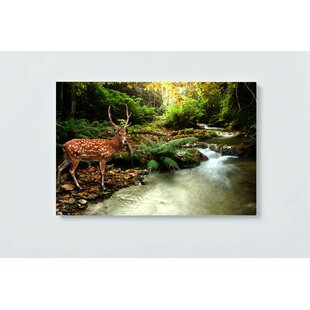 Deer In Magnetic Wall Mounted Cork Board By Ebern Designs