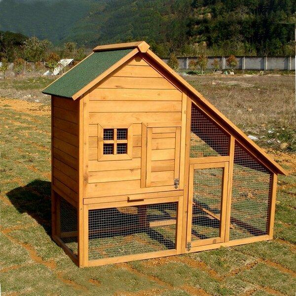 Multi-Level Chicken Coop