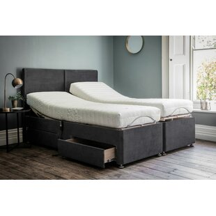 Whisenant Small Double Divan Base By 17 Stories