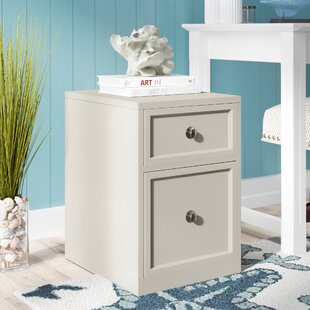 Beachcrest Home Veda 2-Drawer Wood Latera..