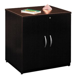 Series C 2 Door Storage Cabinet
