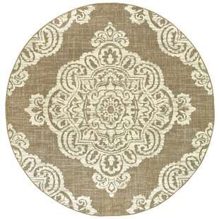 Shelby Casual Tan Indoor/Outdoor Area Rug
