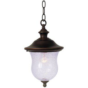 Hanging Coach 1-Light Outdoor Hanging Lantern