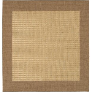 Square Outdoor Rugs You\'ll Love   Wayfair