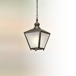 Sybil 1-Light Outdoor Pendant by Darby Home Co Modern